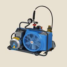 黑龙江宝华JUNIOR?II-E消防队用空气充气泵、压缩机图片