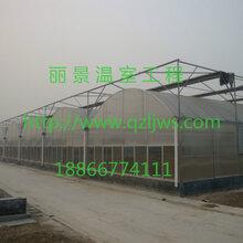 温室大棚建设温室大棚造价蔬菜温室大棚丽景温室