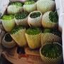广州从化食堂净菜配送公司蔬菜配送公司农产品广州和康餐饮管理服务有限公司图片