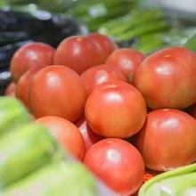 农产品质量追溯系统开发解决方案