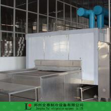 郑州往复式肉制品速冻隧道网带牛肉隧道速冻机厂家