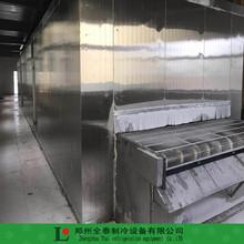 江苏网带包子速冻机水饺隧道式速冻机生产厂家