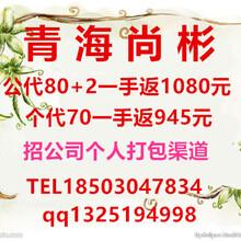 上海大宗商品交易平台哪家比较好-青海尚彬诚招代理最有实力的外汇平台-瑞达国际