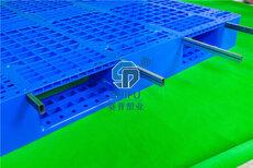 重庆塑料托盘贵州塑料托盘四川塑料托盘厂家图片2