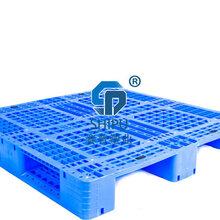 塑料托盘供应/仓储地台板价格1111川字网格防潮垫板厂家