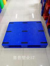 云南大理平板塑料托盤廠家報價-廠家價格