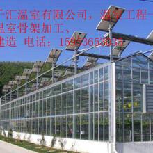 专业连栋温室大棚建设20年,智能温室大棚选永华温室图片