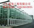 甘肃玻璃温室/智能温室-专业建设公司图片