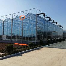 生态园阳光房,生态园阳光房造价,智能玻璃温室大棚