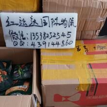 寄发集运食品化妆品包裹快递寄到美国
