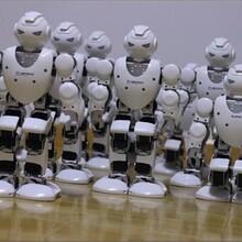 机器人租赁找上海广晏,专业供智能机器人租,产品丰富,价格实惠