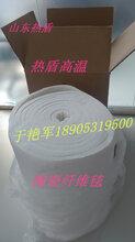 常州工业炉厂家用保温棉热盾陶瓷纤维模块硅酸铝纤维折叠块