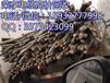 长治电缆回收现如今长治废铜回收价格,长治电缆回收
