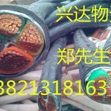 烟台电缆回收/(烟台)大量/大批回收电缆+(二手+废旧)