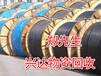"""咸宁电缆回收-近日-最近价格更新资讯-咨询""""""""欢迎访问"""