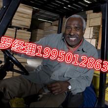 (一手單)全國出國勞務果木采摘工安全可靠勞務輸出圖片