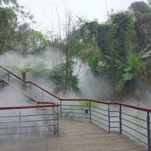 四川自贡植物园人造雾景观,盐都喷雾设备,优质喷雾厂商(推荐)冷雾雾森