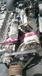 玉柴柴油机YC6J190-20玉柴6105卖家电话