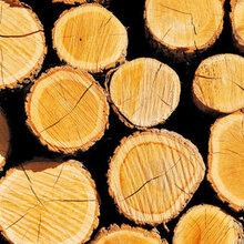 黄埔旧港橡胶木进口清关橡胶木板材进口报关公司