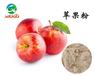 纯天然喷雾干燥-苹果粉