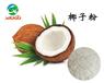 厂家专业生产喷雾干燥果蔬纯粉-椰子粉