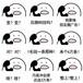 济南微信朋友圈广告解决您的业绩问题山东百鼎科技