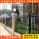 中护围栏铁艺围栏,广州优雅小区锌钢护栏制作精良