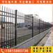 中護圍欄圍墻護欄,深圳自動小區鋅鋼護欄品種繁多