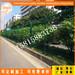 海南市政园林隔离围栏定做三亚小区防护桃型柱护栏厂家