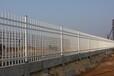 湛江供應小區鋅鋼護欄優質服務