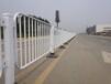 茂名市政道路中間隔離京式護欄生產廠家深圳港式護欄定做