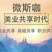 廣州微斯咖定制微商代理管理系統