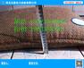 新研制AA抢险吸水膨胀袋堤坝吸水膨胀袋管涌停吸水膨胀袋AA