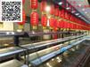 漳州明档自助火锅菜品展示冷藏柜,酒店饭店不锈钢直冷后补式选菜柜