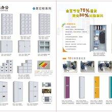 广东钢制保密柜保险柜文件柜档案柜器械柜二十四门柜矮柜