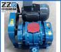 ZZR175中鼓罗茨鼓风机污水处理真空包装水产养殖增压机低噪音低压