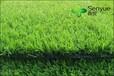 浙江人造草坪幼儿园草坪仿真草坪足球场草坪