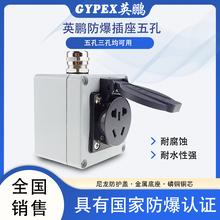 供应英鹏工业防爆插座五孔接线板86型220V图片