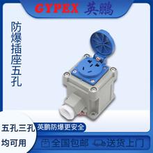 供应英鹏防爆插座,10A16A220v工业五孔86型图片