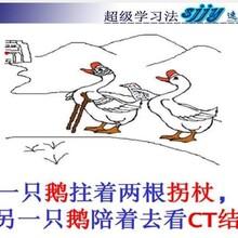 东莞市速记教育,怎么学习英语,快速记忆单词方法