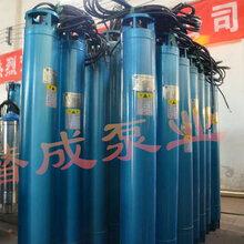 YQS250潜水电机井用潜水电机深井泵潜水电机高压潜水电机天津潜水电机