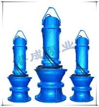 新型350QZB轴流泵新品潜水轴流泵高效节能轴流泵天津轴流泵