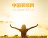 农村创业致上中国农综网,让你创业顾家两不误
