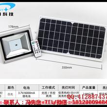 厂家直销批量供应SYL-20/40太阳能灯太阳能庭院灯草坪灯围墙灯12V图片