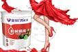 涂料大品牌加盟油漆大品牌代理广东涂料厂家广东油漆价格