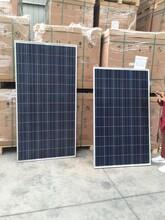 原厂直销晶科单晶太阳能电池板太阳能组件