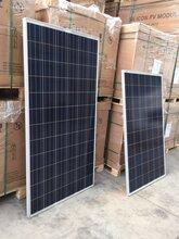 组件回收找拓世长凌公司太阳能电池板光伏组件原装现货图片