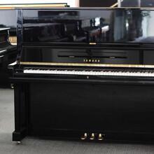 外观高贵优雅,品质卓越,且价格合理的原装进口钢琴