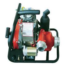 加拿大原装进口接力水泵背负式森林消防泵WICK250图片
