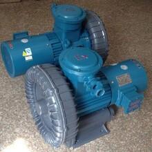 防爆高压气泵输送气体专用防爆气泵